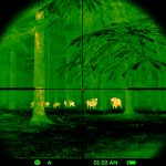 Boars-reticle